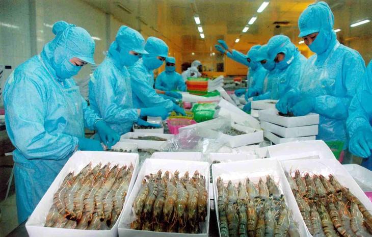 Anti-dumping duties on Vietnamese frozen shrimp reduced - ảnh 1