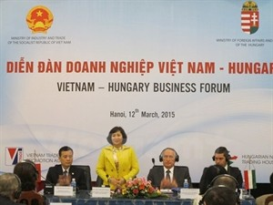 Vietnam, Hungary strengthen business ties - ảnh 1