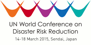 VN's Vice President attends 3rd UN World Conference on Disaster Risk Reduction  - ảnh 1