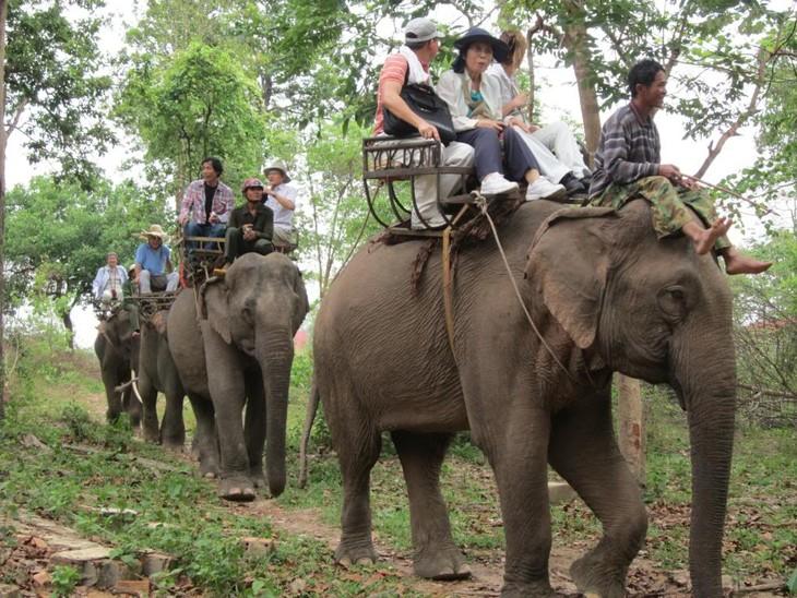 Yokdon National Park - ảnh 4