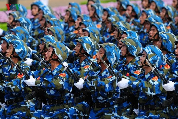 Scenes from majestic National Day parade - ảnh 8