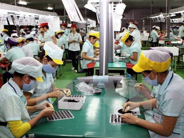 Vietnam is to become Southeast Asian Silicon Valley - ảnh 1