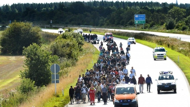 Migration wave poses serious challenges to Europe  - ảnh 1