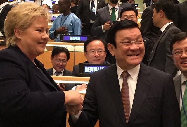 President Truong Tan Sang meets Norwegian Prime Minister Erena Solberg  - ảnh 1