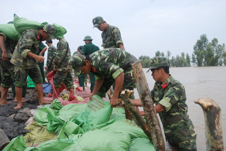 Vietnam participates in ASEAN's training course on natural disaster rescue - ảnh 1