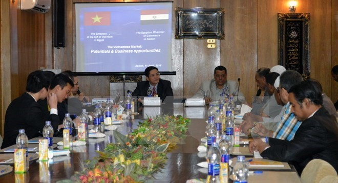 Egyptian investors expand business in Vietnam - ảnh 1