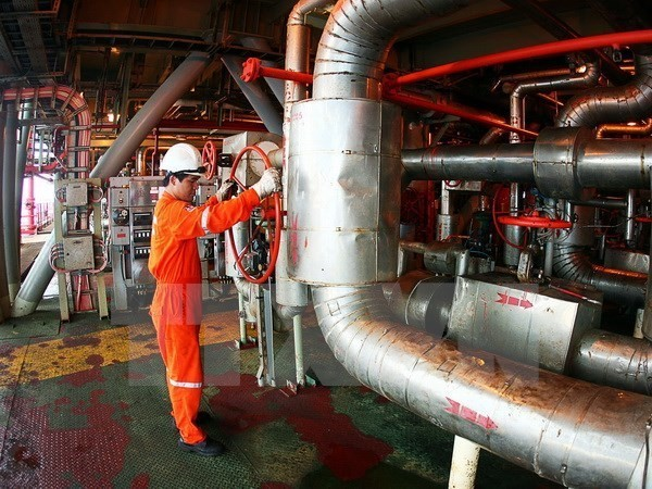Vietnam, Russia to promote cooperation in oil and gas exploitation - ảnh 1