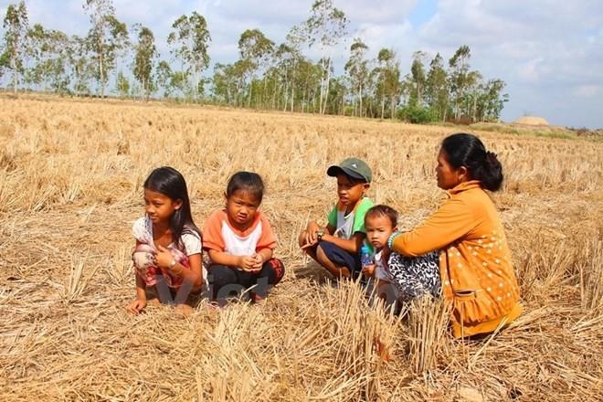Vietnam calls for 48.5 million USD for disaster response - ảnh 1