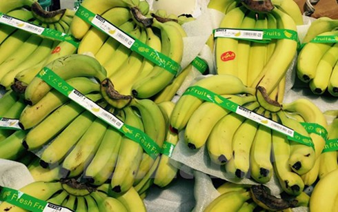Vietnam's bananas sold in Japan - ảnh 1