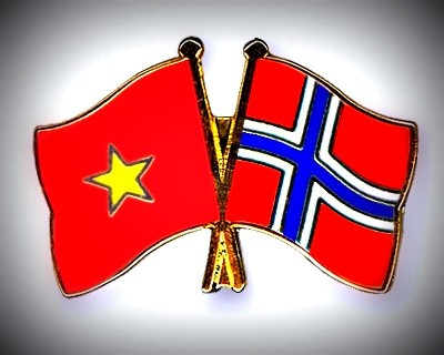 Vietnam-Norway 8th political consultation at deputy foreign ministerial level opens - ảnh 1
