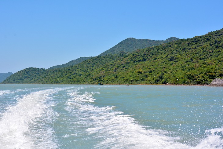Ba Mun island - a paradise for wild animals - ảnh 1