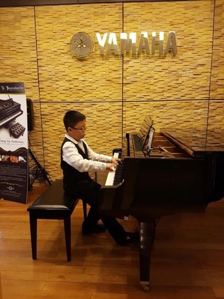 Amateur pianist takes first prize - ảnh 1
