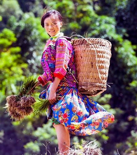 Hoang Su Phi terraced fields in rainy season - ảnh 10