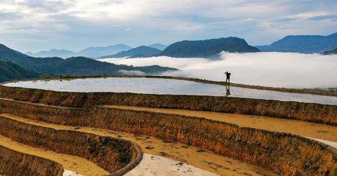 Hoang Su Phi terraced fields in rainy season - ảnh 6