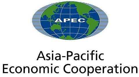 Vietnam completes 90% of preparation work for APEC Year 2017 - ảnh 1