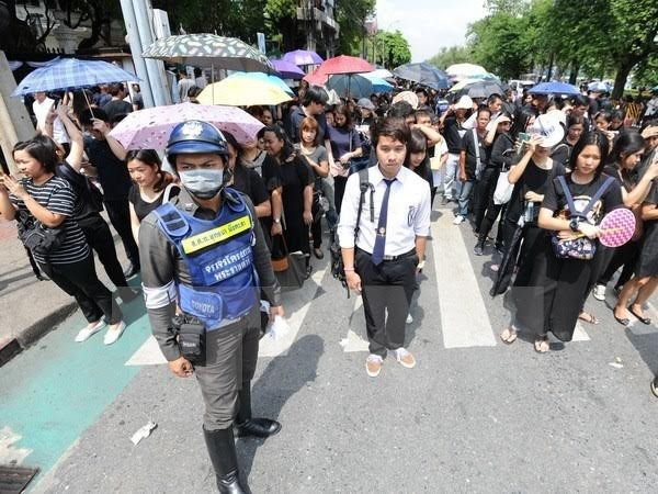 Thai Government calls for national unity   - ảnh 1