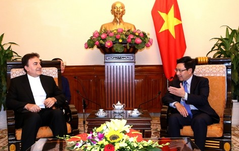 Deputy Prime Minister Pham Binh Minh receives Iranian Ambassador - ảnh 1