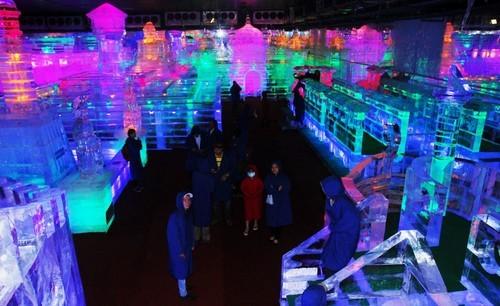 Ice sculpture exhibition at Dam Sen Park - ảnh 1