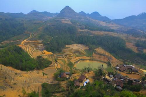 Yasushi Ogura- Love Vietnam at first sight  - ảnh 2