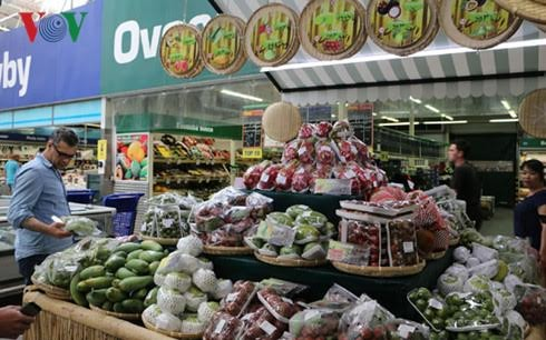 Strengthening Vietnamese foothold in overseas fruit markets - ảnh 1