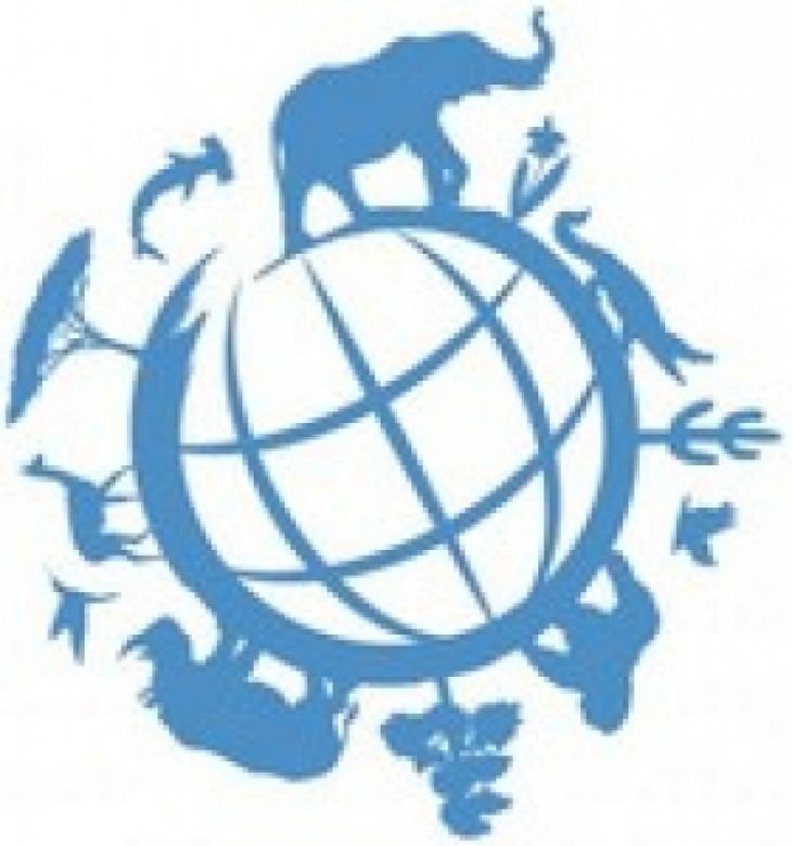 Vietnam proposes measures to eliminate wildlife trafficking - ảnh 1