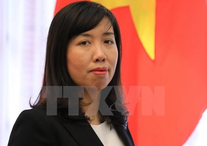 Vietnam opposes sovereignty violation activities - ảnh 1