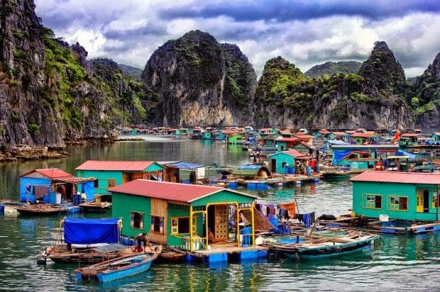 Protecting Ha Long Bay's aqua resources - ảnh 1