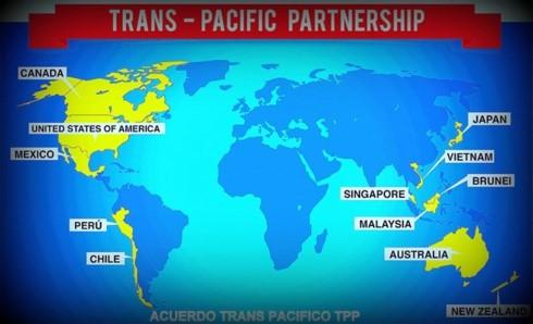 TPP negotiators discuss amendments after US withdrawal - ảnh 1