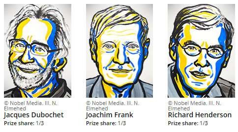 The Nobel prize in Chemistry triggers a revolution in biochemistry - ảnh 1