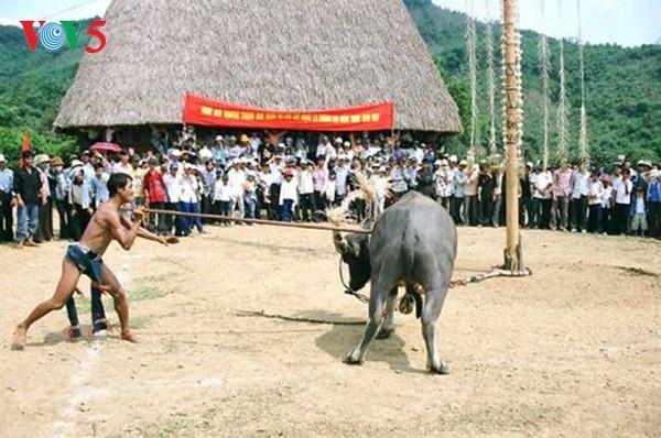 The Ma's buffalo sacrifice ritual dedicated to Jade Emperor - ảnh 1