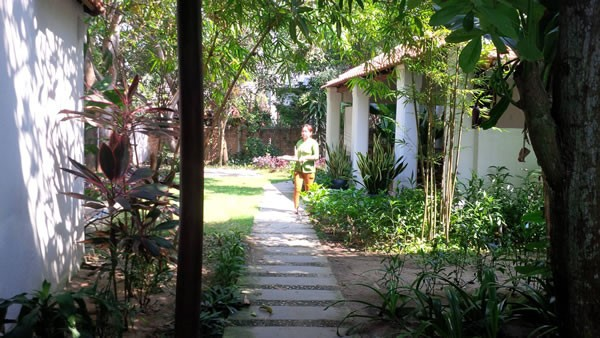 Homestay service in Hoi An attract visitors - ảnh 2