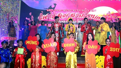 Comunidad vietnamita celebra fiesta de unidad nacional en República Checa - ảnh 1
