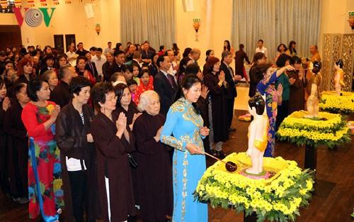 Vietnamitas en República Checa celebran 2561 aniversario del nacimiento e iluminación de Buda - ảnh 1
