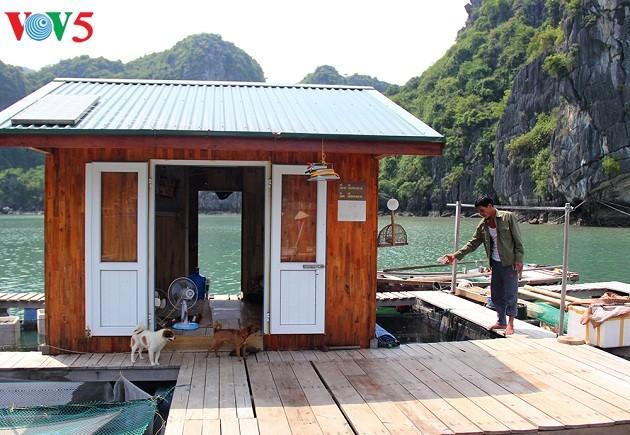 Nuevos medios de subsistencia para pescadores de la Bahía de Ha Long - ảnh 2