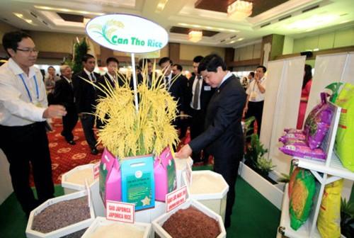 La seguridad alimentaria y el desarrollo agrícola a largo plazo centran la agenda de APEC - ảnh 1