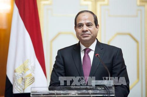 La visita del presidente del Egipto a Vietnam busca escribir nueva página de relaciones bilaterales - ảnh 1