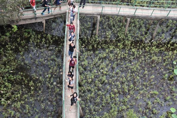 Những hình ảnh đẹp của Trại hè Việt Nam 2017 - ảnh 42
