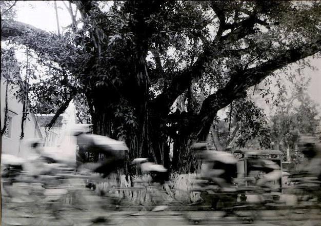 Hà Nội qua con mắt của một nghệ sĩ nhiếp ảnh gốc Hà Nội - ảnh 5
