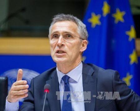 Países aliados respaldan participación de OTAN en coalición internacional contra Estado Islámico - ảnh 1