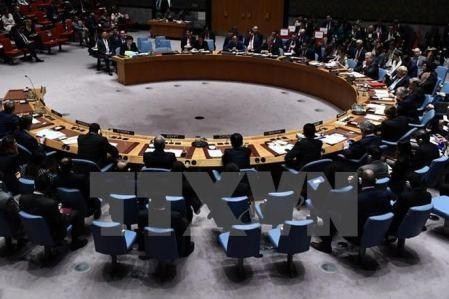 Bolivia asume la presidencia del Consejo de Seguridad de la ONU - ảnh 1