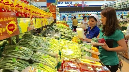 Vietnam ocupa el sexto lugar en el índice global de desarrollo minorista - ảnh 1
