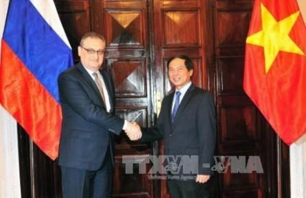 Vietnam y Rusia sostienen diálogo estratégico y consulta política - ảnh 1