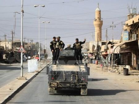 Estado Islámico pierde el 95% de su territorio  - ảnh 1