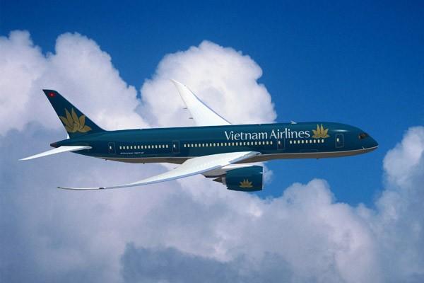Informasi tentang jalan udara langsung kota Ho Chi Minh-Jakarta - ảnh 1