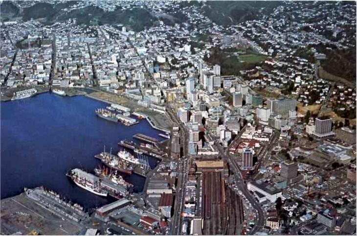 Sidang konsultasi politik ke-9 antara Kemlu Vietnam dan Kemlu Selandia Baru - ảnh 1