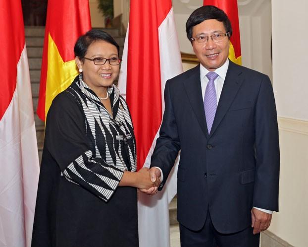 Vietnam dan Indonesia berusaha meningkatkan nilai dagang menjadi sebanyak 10 miliar pada 2018 - ảnh 1