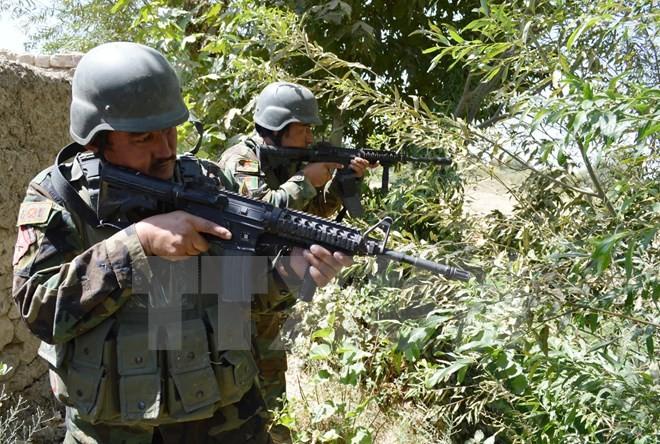 Afghanistan membasmi seluruh obyek yang menyerang Konsulat Jendral India - ảnh 1