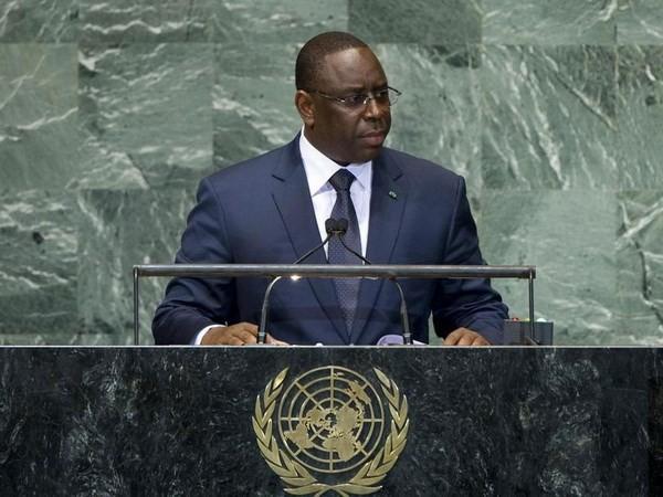 Senegal memprioritaskan  penanganan bentrokan dengan martabat sebagai anggota tidak tetap DK PBB - ảnh 1