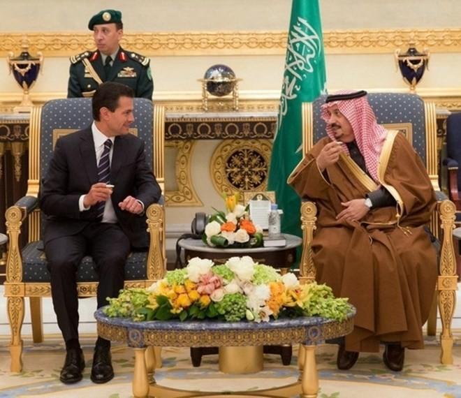 Meksiko dan Arab Saudi menandatangani 11 naskah kerjasama - ảnh 1