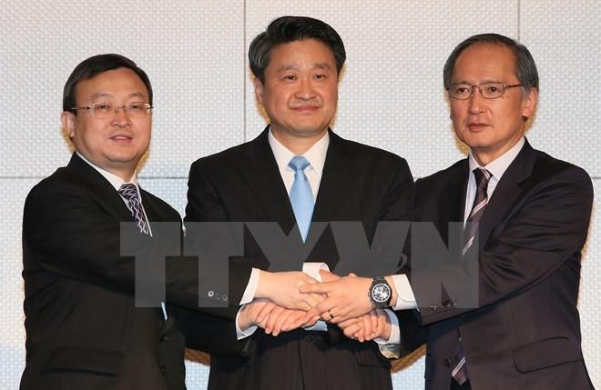 Perundingan FTA Jepang, Tiongkok, Republik Korea belum mencapai kemajuan - ảnh 1